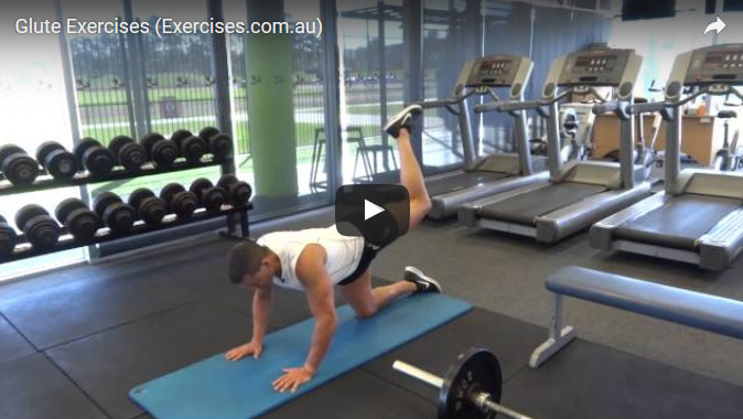 Glute Exercises [131 Demo Video Exercises For Glutes]