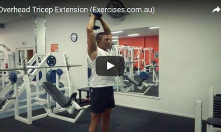 Overhead Tricep Extension