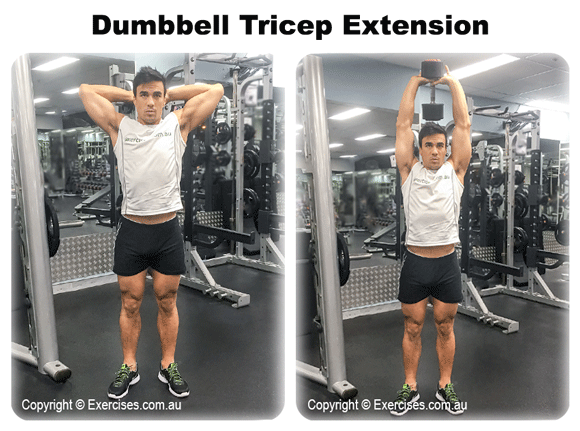 Dumbbell Tricep Extension