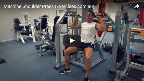 Hammer Strength Shoulder Press