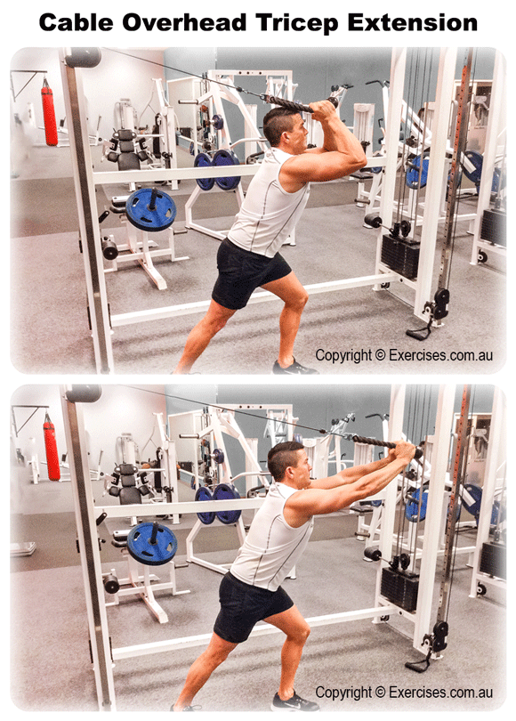 Cable Overhead Tricep Extension