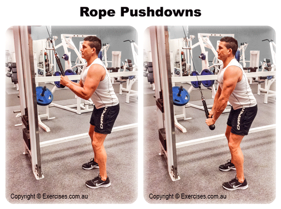 Rope Pushdowns