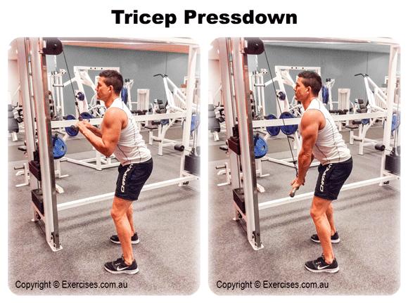 Tricep Pressdown
