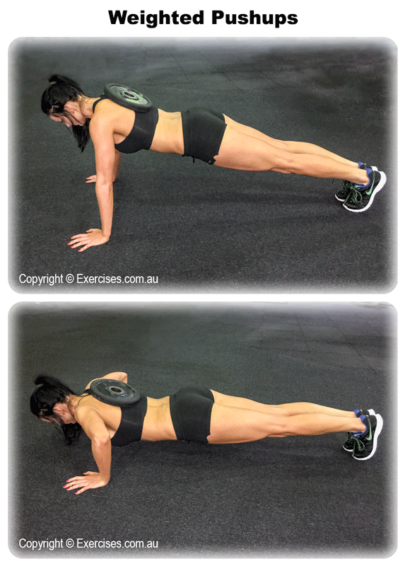Weight Pushups
