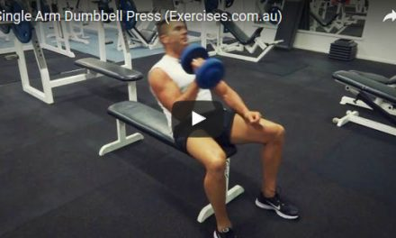 Single Arm Dumbbell Press