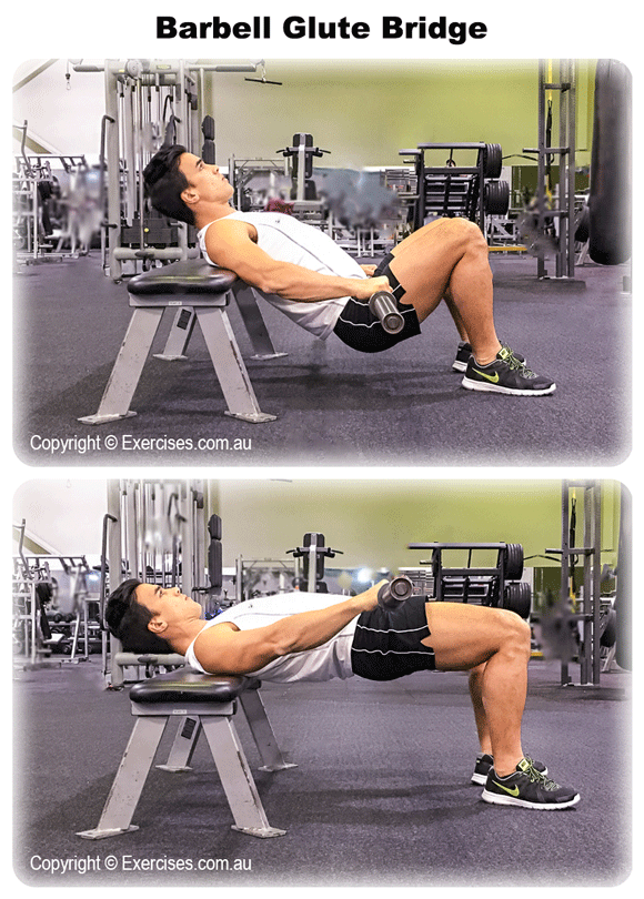Barbell Glute Bridge