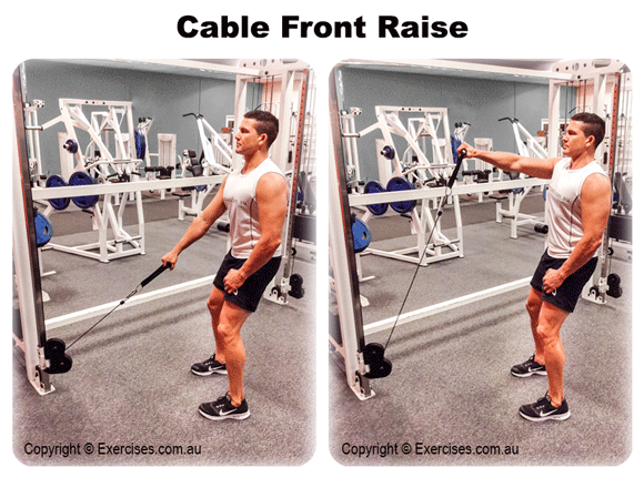Cable Front Raise