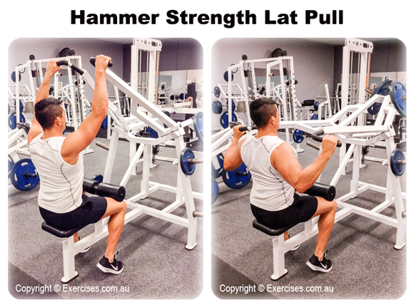 Hammer Strength Lat Pull