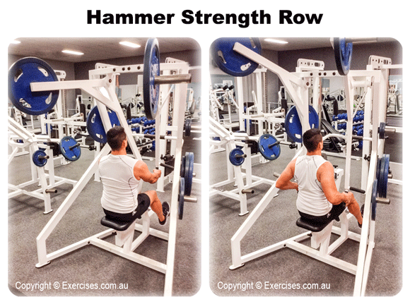 Hammer Strength Row