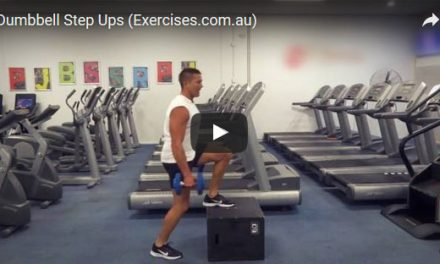 Dumbbell Step Up