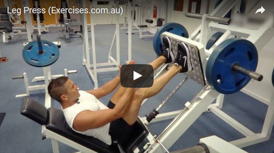 Hammer Strength Leg Press