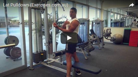 Underhand Lat Pulldown | exercises.com.au