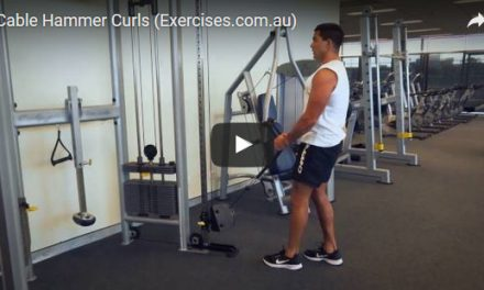 Cable Hammer Curls