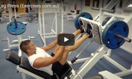 45 Degree Leg Press