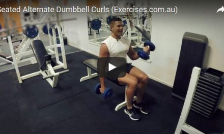 Seated Alternate Dumbbell Curls