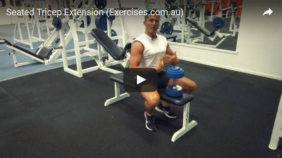 Seated Tricep Extensions
