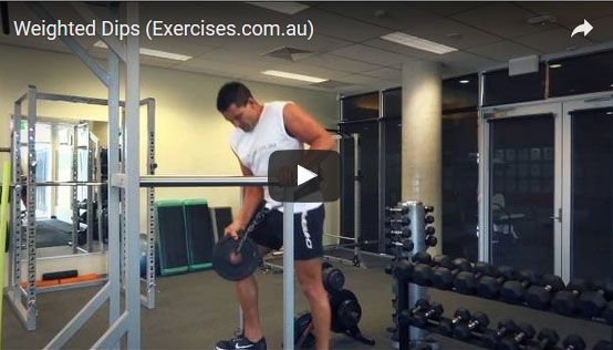 Weighted Tricep Dips