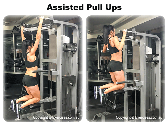 Assisted Pull Ups | exercises.com.au