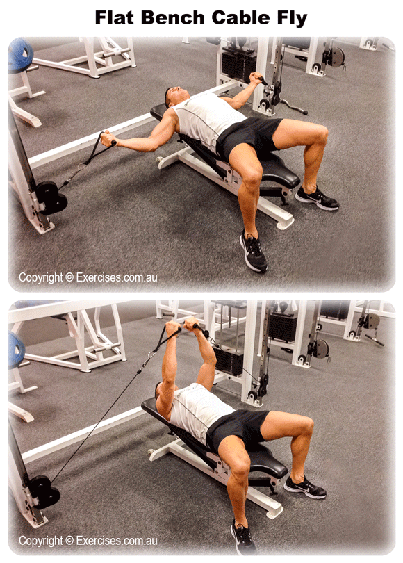 Flat Bench Cable Fly