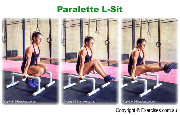 Paralette L Sit