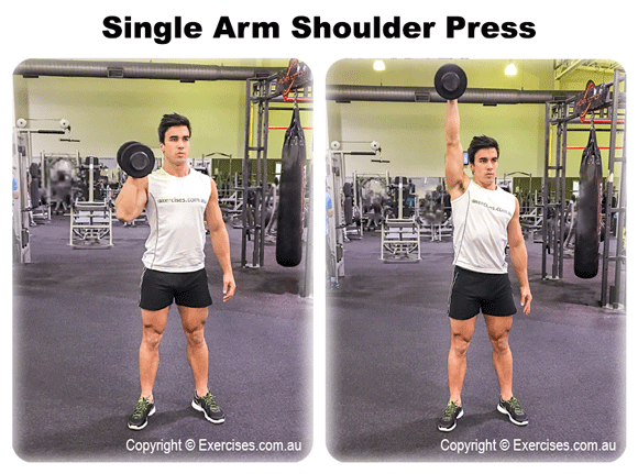 Single Arm Shoulder Press