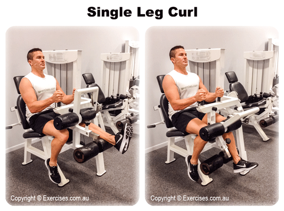 Single Leg Curls
