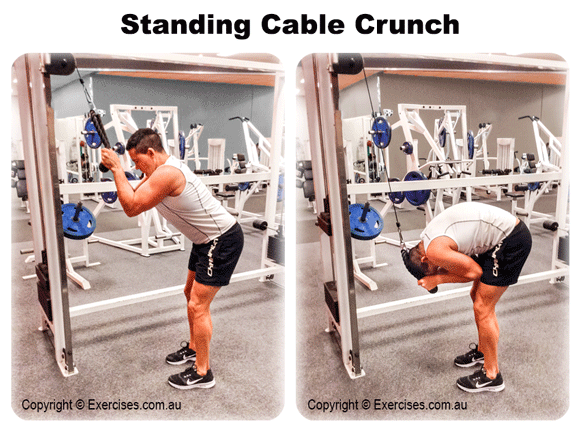 Standing Cable Crunch