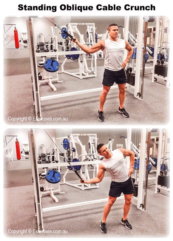 Standing Oblique Cable Crunch
