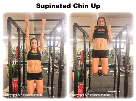 Supinated Chin Up