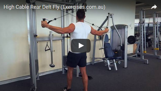 High Cable Rear Delt Fly