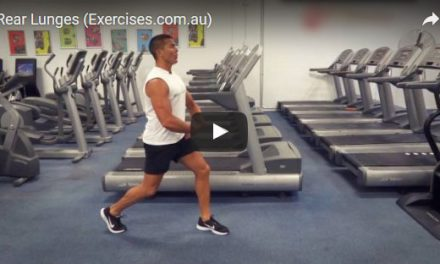 Rear Lunges