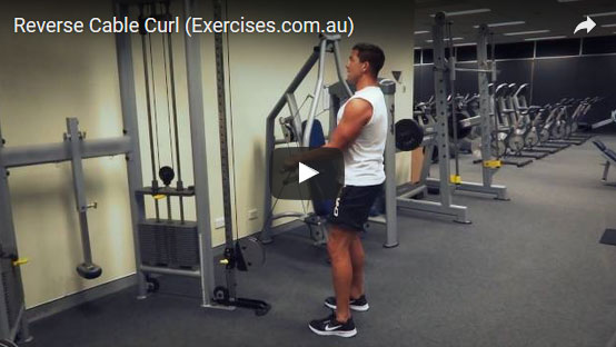 reverse cable curl exercisescomau