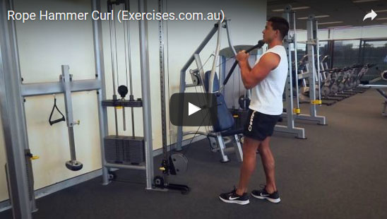 Rope Hammer Curl