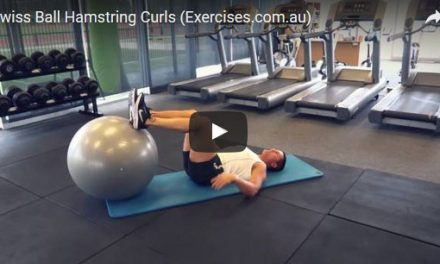 Swiss Ball Hamstring Curls