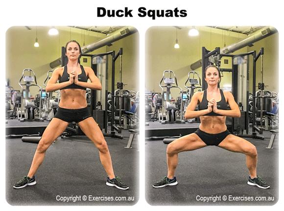 Duck Squats