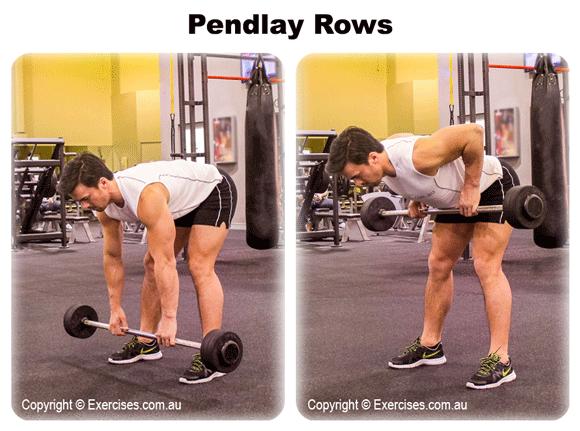 Pendlay Rows
