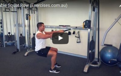 Cable Squat Row