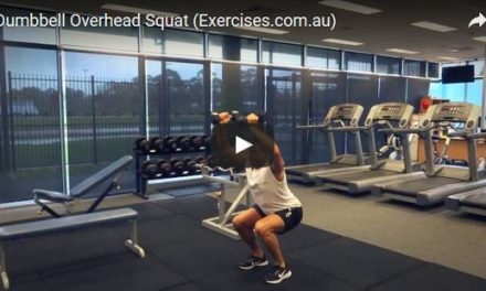 Dumbbell Overhead Squat