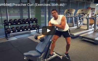 One Arm Dumbbell Preacher Curl