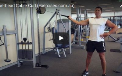 Overhead Cable Curl