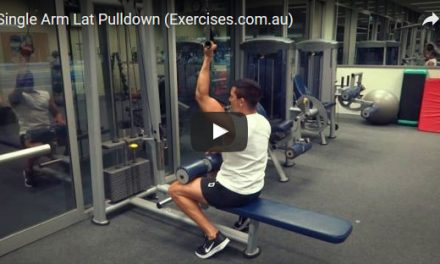 Single Arm Lat Pulldown