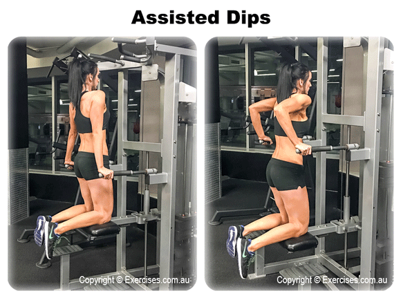 Assisted Dips | exercises.com.au