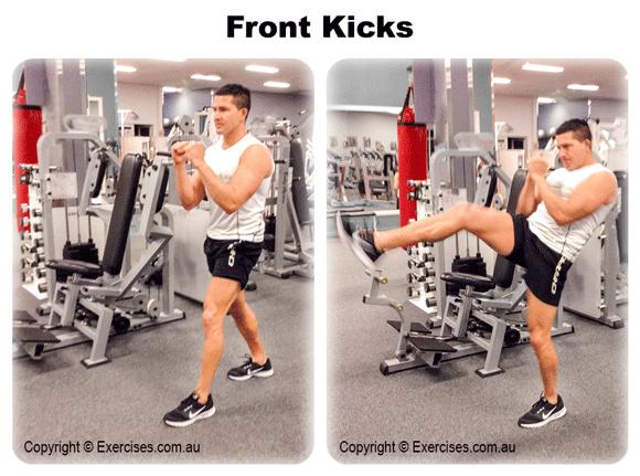 Front Kicks