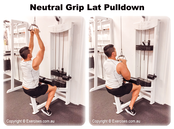 Neutral Grip Lat Pulldown