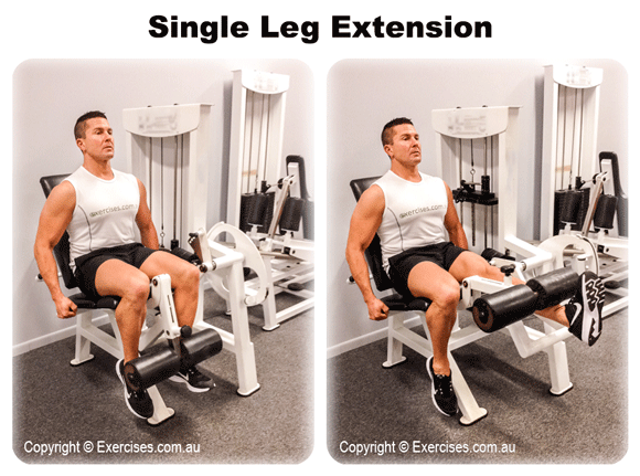 Single Leg Extension