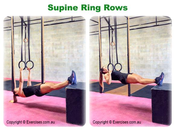 Supine Ring Row