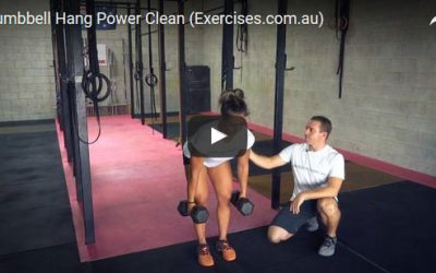 Dumbbell Hang Power Clean