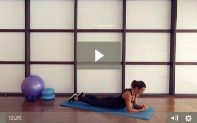 Ab Plank Circuit (12 mins)