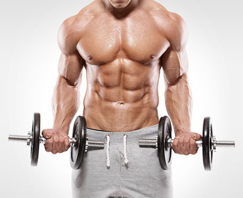 The Ultimate Guide To Building Muscle