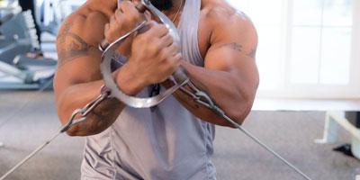 Gym Equipment Arms